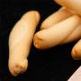 crema-de-bacalao-detalle-pan-Sotavento-Conservas-Artesanas
